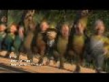 Shrek Forever After - I&apos M A Believer