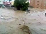 Flooding In Jeddah, Saudi Arabia With Lucky Motorist
