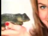 Alicia Silverson PETA