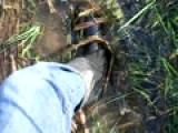 Boot Boggin!!