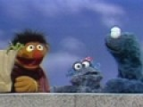 Ernie With Cookie Monster&#39 S
