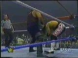 Voted Match Of Year 1995 Jean Pierre LAFITTE VS Bret Hart