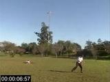 Fast Catch Sandro 17s25