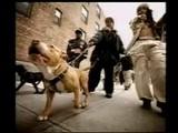 Aaliyah Feat Dmx