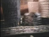 Frank Zappa - City Of Tiny Lites