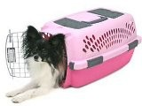 Petmate Pet Taxi Fashion Kennel, Small