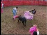 Toro Umilia Torero, Nudo Nell'arena