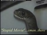 Snake In A Sink - Funny
