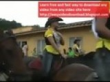 Horse Parade Fail, Horny Horse Assaults A Rider