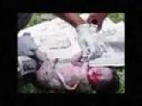 Buang Bayi - Pelajar UNISEL Shah Alam