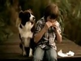 Boy Stops Sharing With Dog