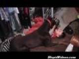Dog Tickling Baby